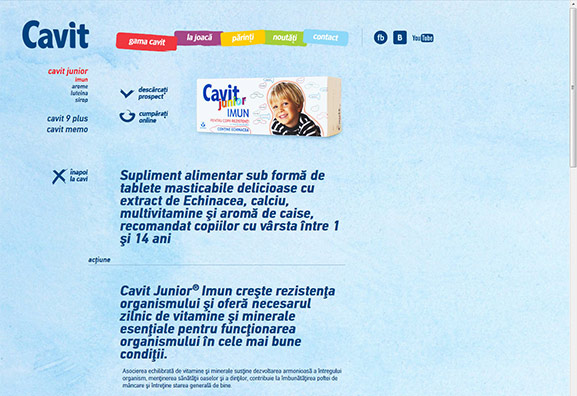 captură website Cavit