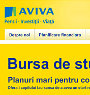 web design, modul de administrare site, optimizare site - Aviva